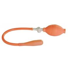 plug hinchable