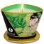 Vela Zenit te verde 170 ml