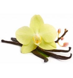 SHUNGA ACEITE MASAJE DESEO aroma VAINILLA 250 ML
