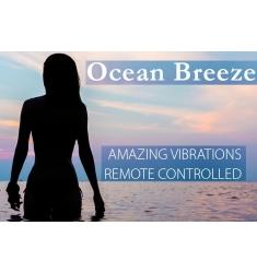 HUEVO VIBRADOR RECARGABLE CON CONTROL REMOTO OCEAN BREEZE
