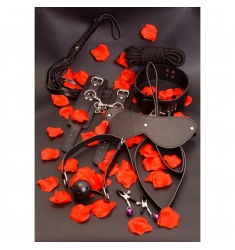 Set de bondage AMAZING BONDAGE SEX TOY KIT